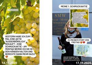 Wein als Sachvididende - MW Mosel Weinberg AG